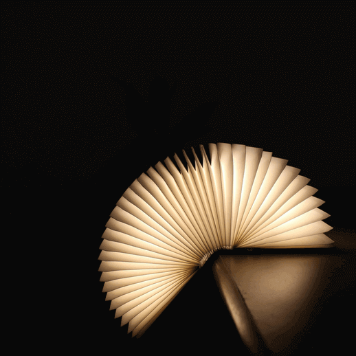 book-lamp-buy-online-india-booksom-foldable (2)